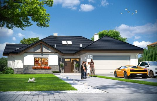 House plan Extensive 2 - front visualization
