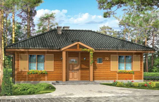 House plan Dudek - front visualization